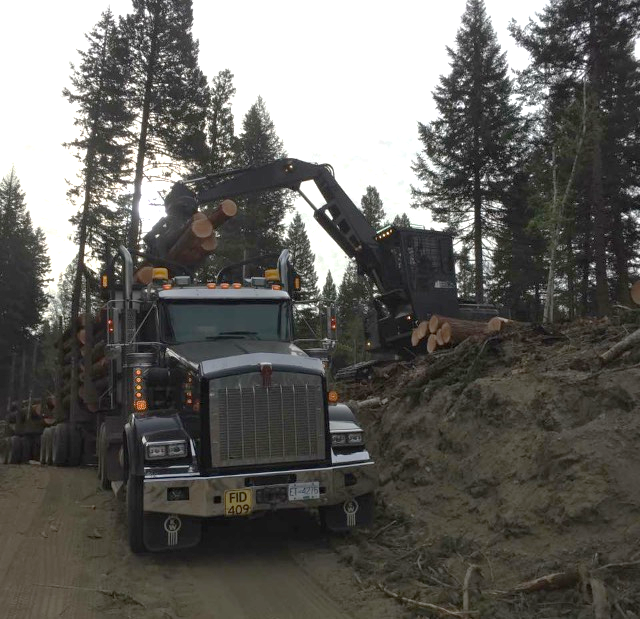Figure 16. Credit: Amanda Black. The loader is placing some final logs onto the truck. After loading, the truck driver will get out of the truck and secure the load. A truck load is roughly 65 cubic meters of wood.