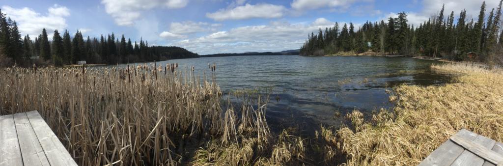 Bridge Lake, BC. 2019.