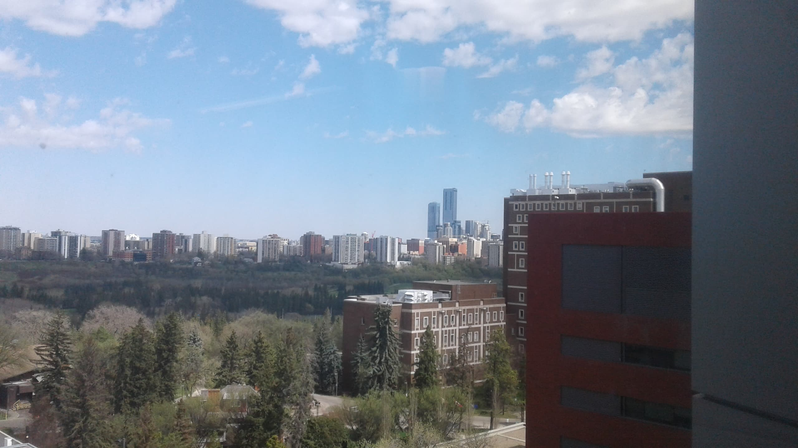 skyline view of alberta
