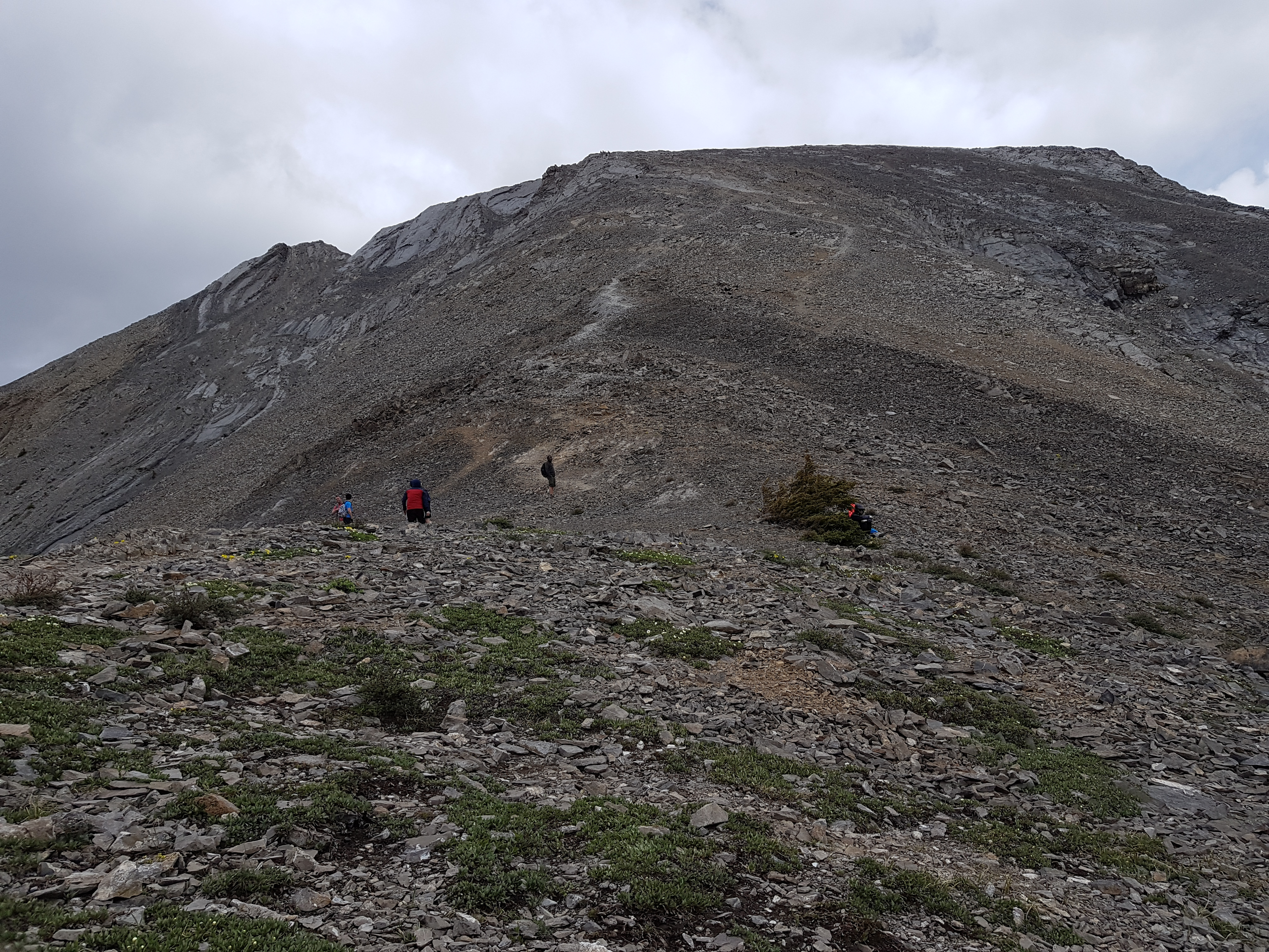 view of top of mountain from the bottom