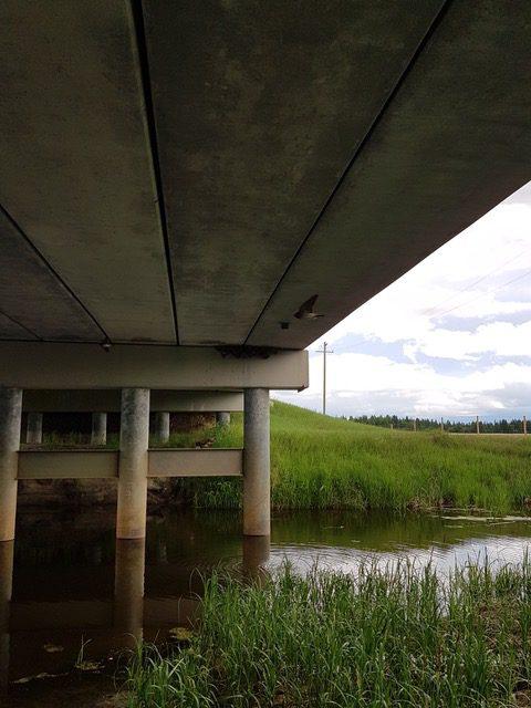 view of water under a bridge