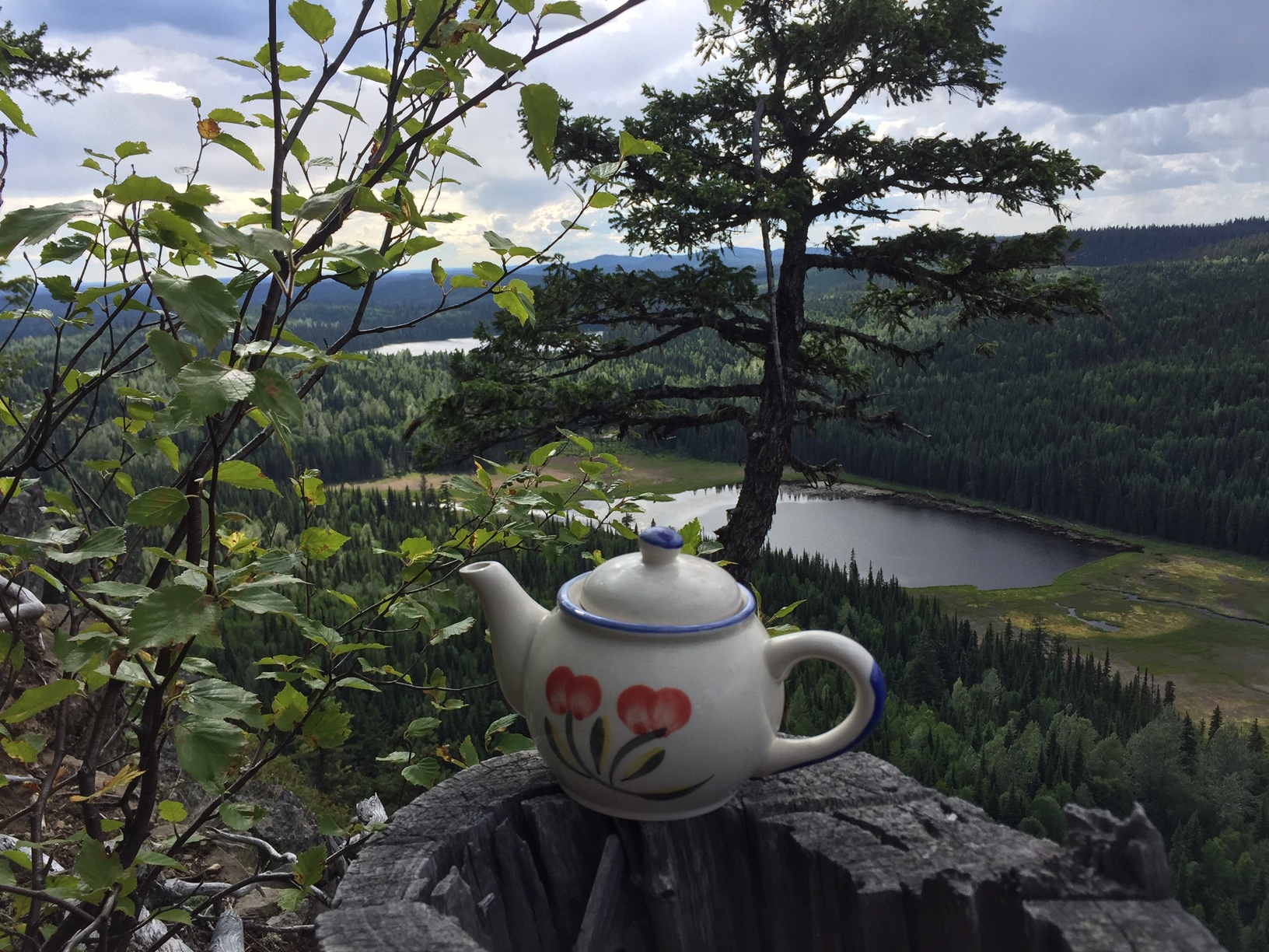 Teapot on ledge with view of lake and forest