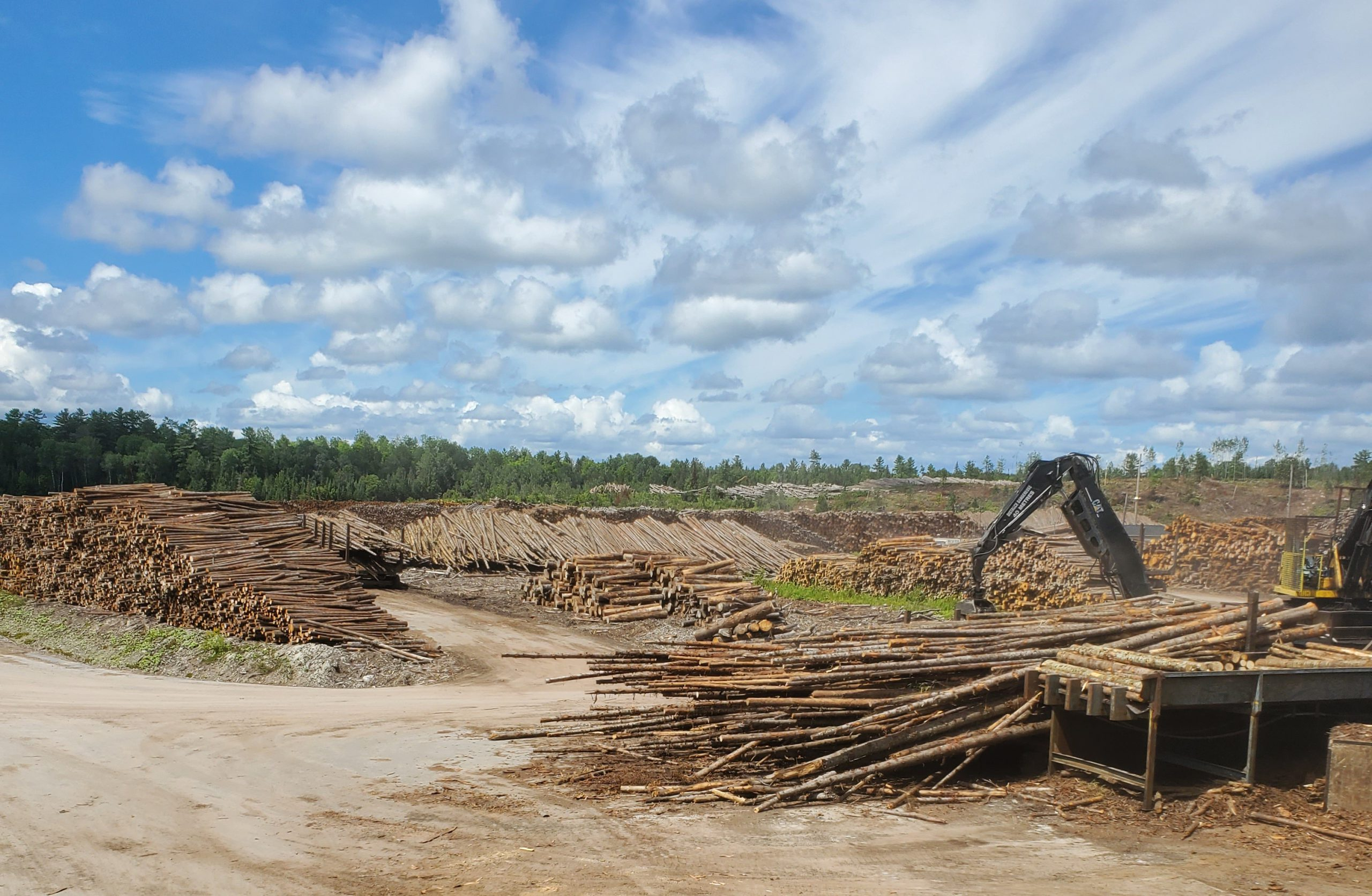 Overview of a logging site.