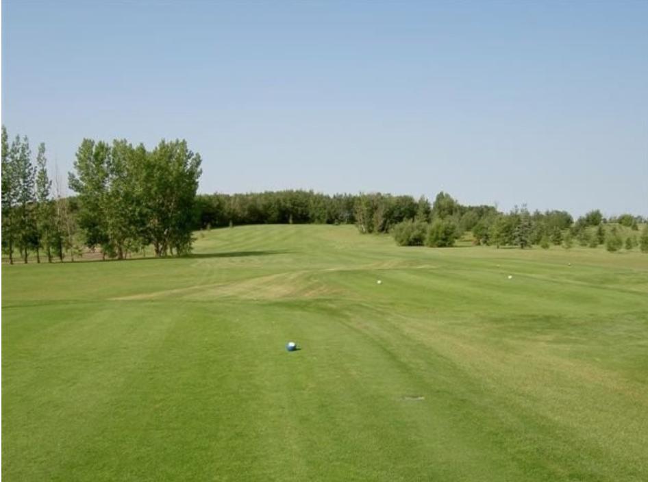 A golf course fairway.