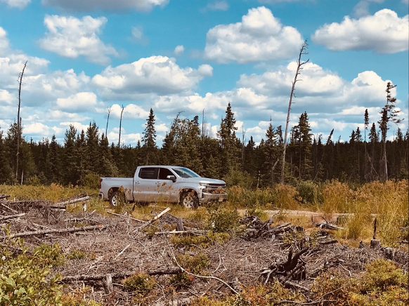 A truck in the middle of a cleared forest.